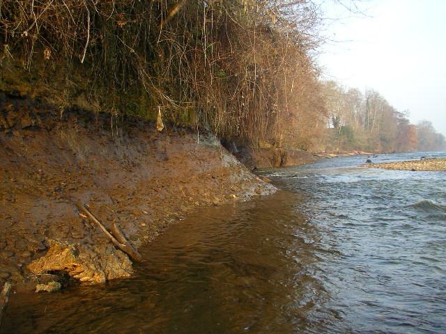 Le long de la rive