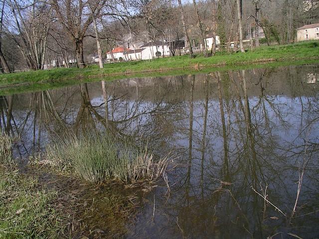 mon petit étang