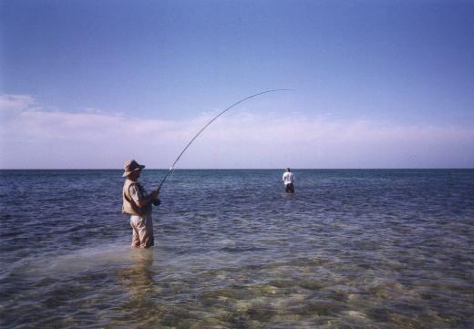 Cuba bonefishing 1998
